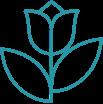 NEPA Icon